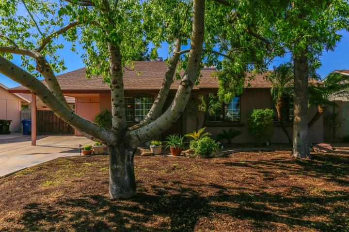 539 W LA DONNA Drive, Tempe, AZ 85283