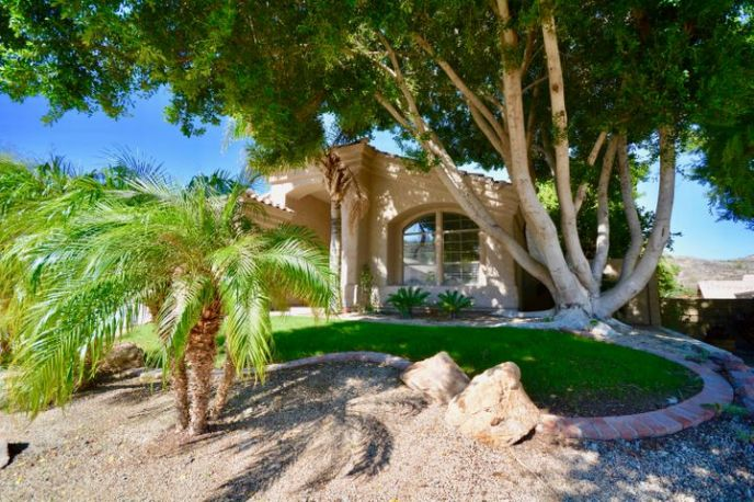 Tropical paradise in quiet neighborhood!