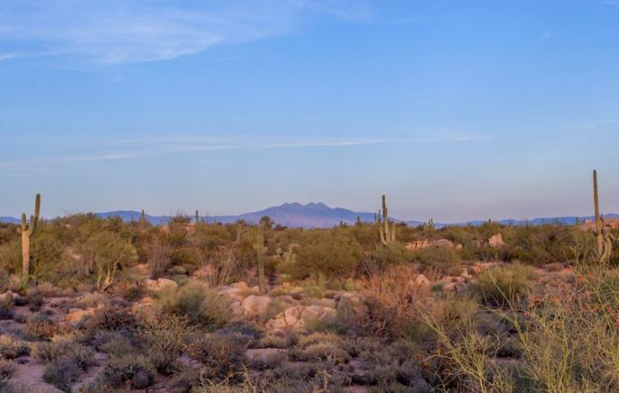 28787 N 114th Street, 39, Scottsdale, AZ 85262