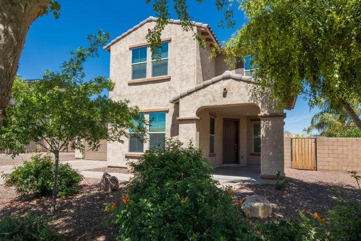 18134 W GLENROSA Avenue, Goodyear, AZ 85395