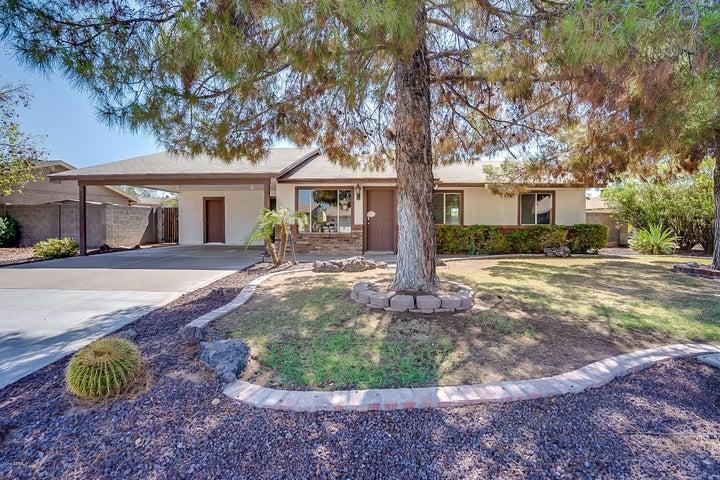 1705 N EVERGREEN Street, Chandler, AZ 85225