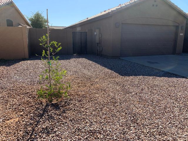 Large front side yard with gate and new tree