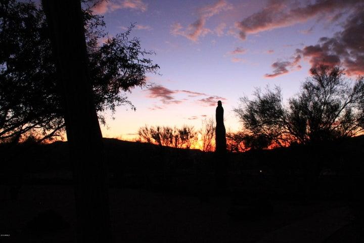 Gorgeous Frontyard View