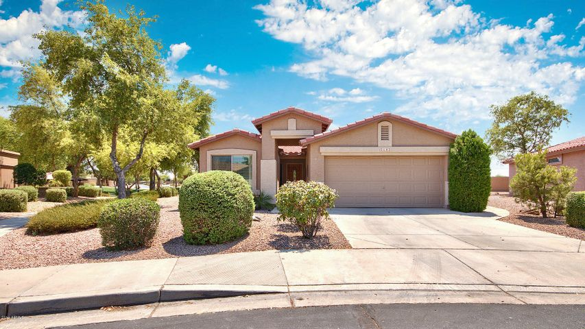 5142 S CITRUS Lane, Gilbert, AZ 85298