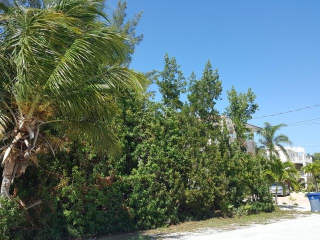 159 S Indies Drive, Duck Key, FL 33050