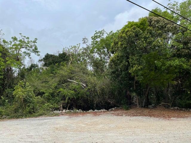 Vacant Lot Tree Lane, Key Largo, FL 33070