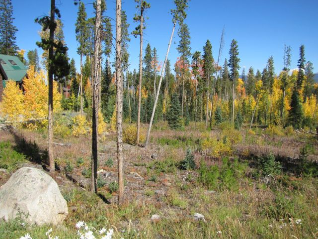 400 MOOSE Trail, Winter Park, CO 80482