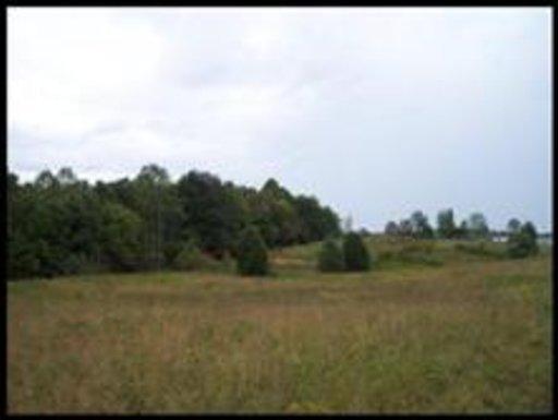 Leach Medley Rd, Speedwell, TN 37870