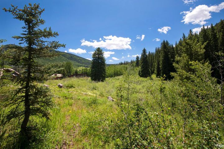 Absolutely stunning half-acre parcel of land in East Vail with panoramic views of the surrounding mountains and a dynamic landscape with water features and rock formations that could be incorporated into unique architectural elements in a future home. Zoned Two Family Primary/Secondary, this property is located steps from the bus stop and backs to US Forest Service land. Original single-family home is on site; the owner has enjoyed living in this incredible location full-time for 40 years.