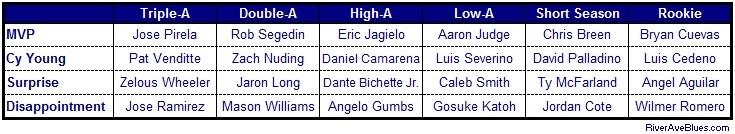 2014 Minor League Award Individual Levels