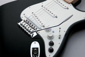 Roland  G5   VG Stratocaster®