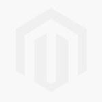 Fern Engraved Champagne Glasses Rose Grey