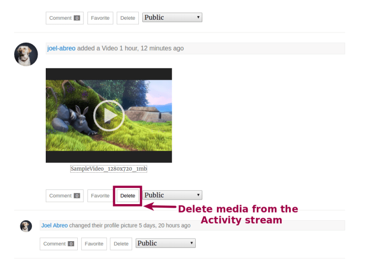 Delete from activity stream