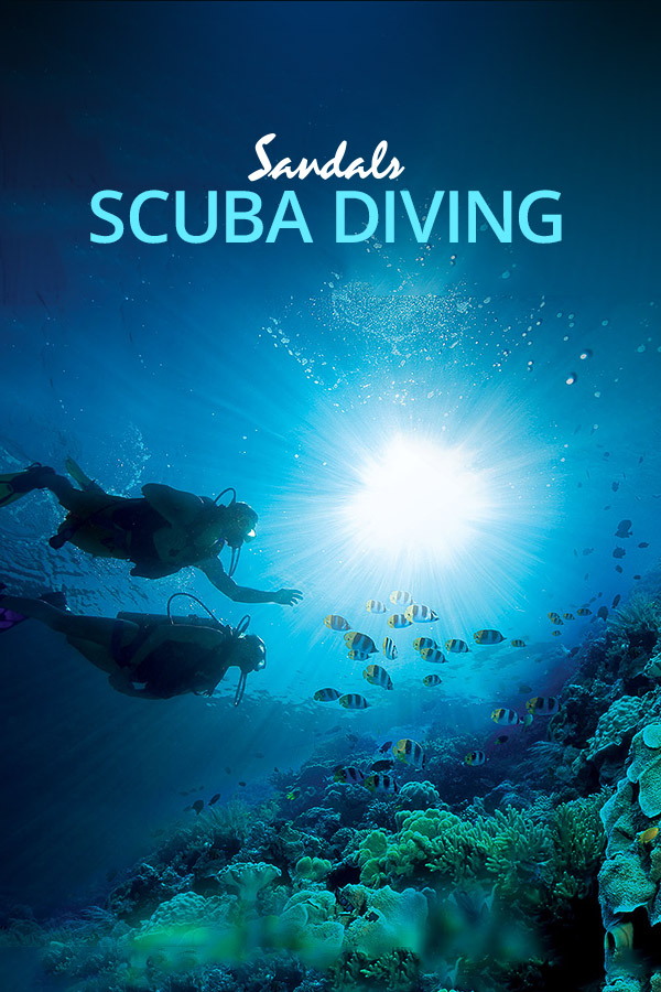 All Inclusive Scuba Diving Resorts Amp Vacations Sandals