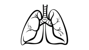 PACIFIC regimen is suitable for use in patients with non-small cell lung cancer after chemotherapy
