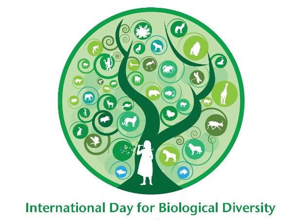 Παγκόσμια Ημέρα Βιοποικιλότητας
