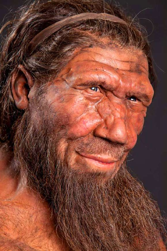 Neanderthal DNA Gave Humans Allergies, Immunity Boost | Anthropology ...