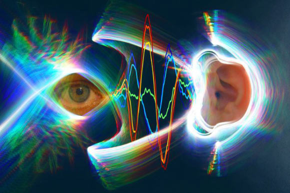 The eardrums move when the eyes move. Image credit: Jessi Cruger & David Murphy, Duke University.