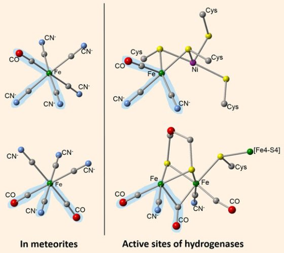 CM chondrite meteorites contain organometallic compounds that resemble portions of enzymes found in bacteria and archaea. CN is cyanide, CO is carbon monoxide, Fe is iron, Ni is nickel. Image credit: Smith et al, doi: 10.1038/s41467-019-10866-x.
