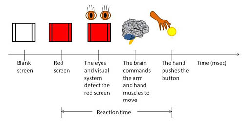 Think Fast: Do Video Game Players Have Faster Reaction ...