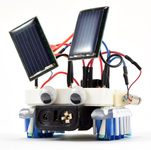 Build a Solar-Powered Bristlebot   Science Project