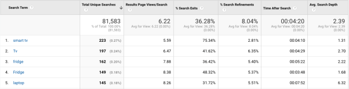 google analytics site search terms report