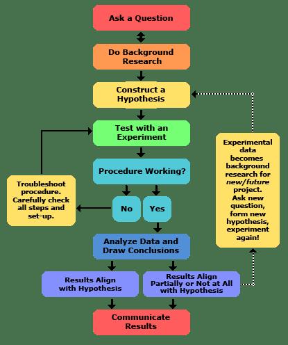 scientific process visualization