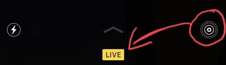Twitter Lets iOS Users Post Live Photos as GIFs