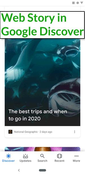 لقطة شاشة لقصص الويب في Google Discover
