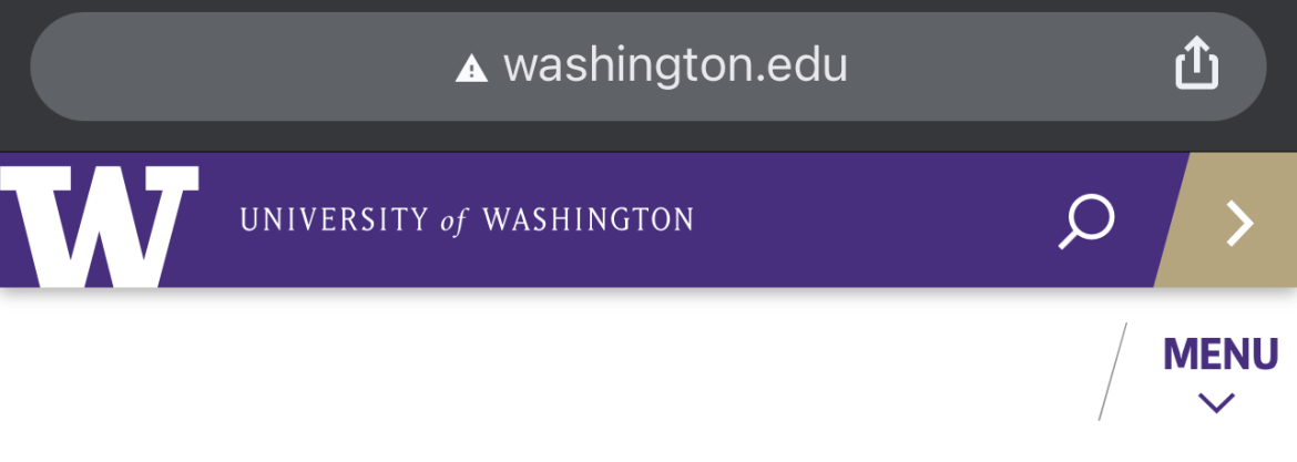 Example of an insecure website connection on mobile.