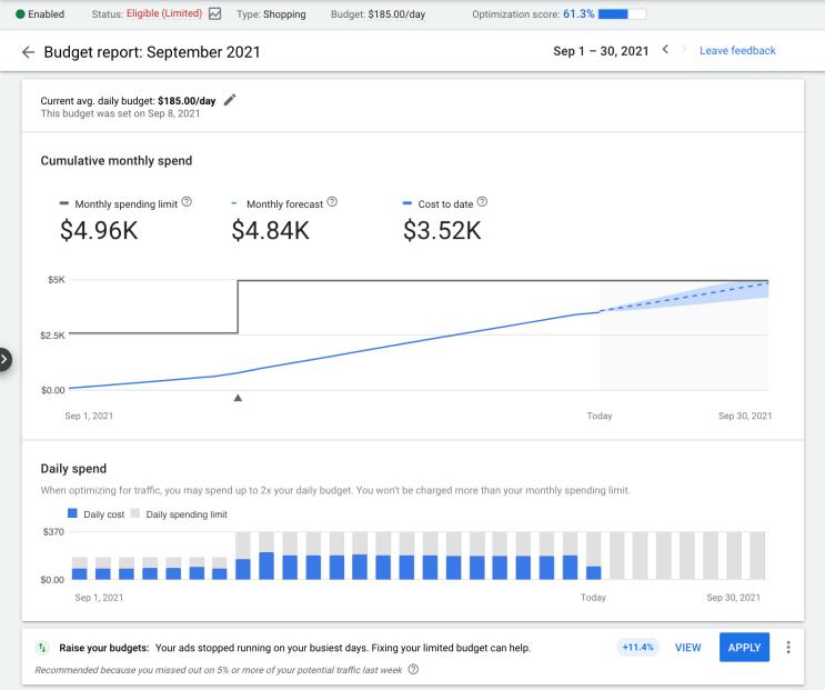 google ads budget report