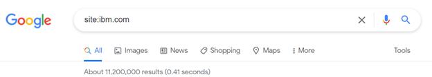 Google search for site:ibm.com.