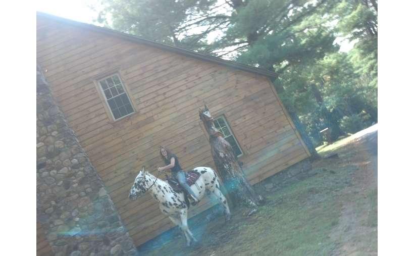 Adirondack Log Cabins At The Painted Pony Ranch Near Lake