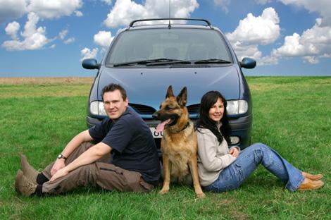auto y perro