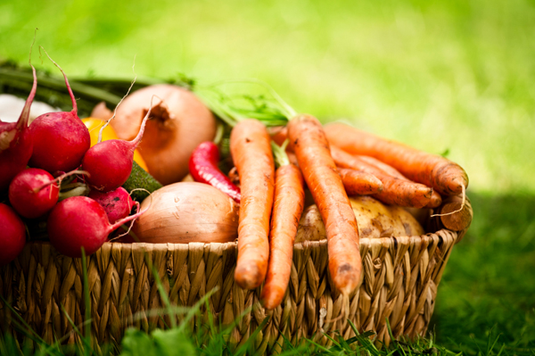 https://i0.wp.com/cdn.sheknows.com/articles/2012/09/basket-of-fall-veggies.jpg?w=980