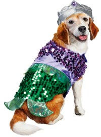 5 Tail-waggingly cute dog Halloween costumes