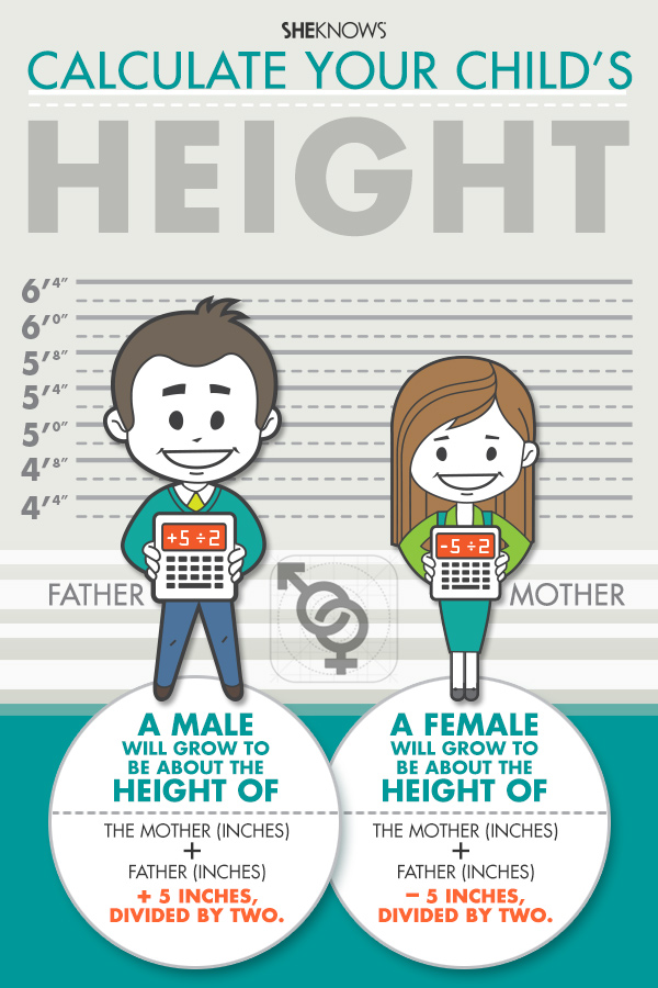 boy height predictor calculator - DriverLayer Search Engine
