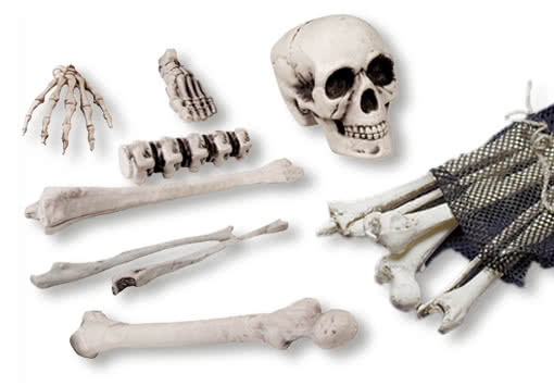 https://i0.wp.com/cdn.shockers.de/out/pictures//master/product/1/kunststoff_knochen-plastik_skelett-deko_knochen-realistische_knochen-plastic_bones-18870.jpg