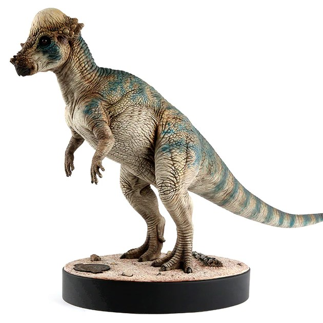 Pachycephalosaurus Chronicle Collectibles