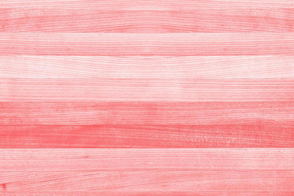 Coral Pink Or Peach And Salmon Color Wall Mural Wallpaper