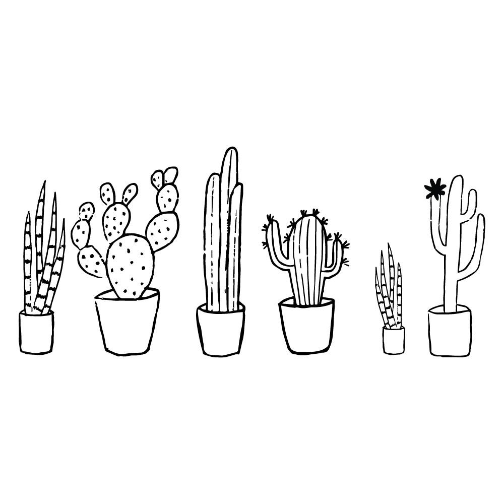 cactus black white set