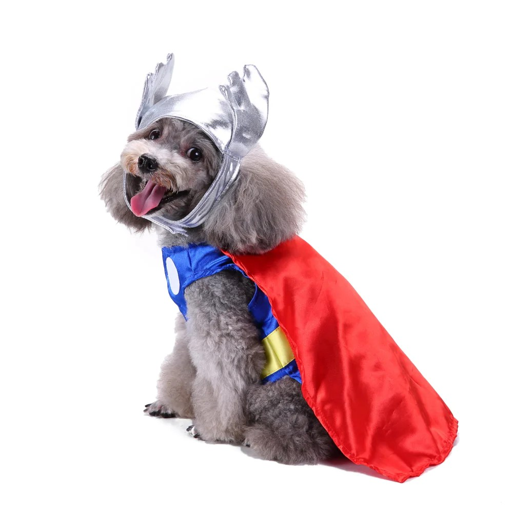 Image result for dog in a superhero costume