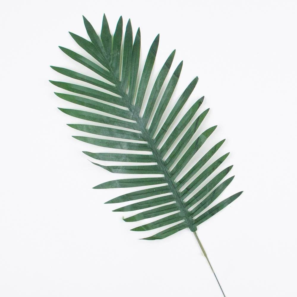 1 feuille de palmier