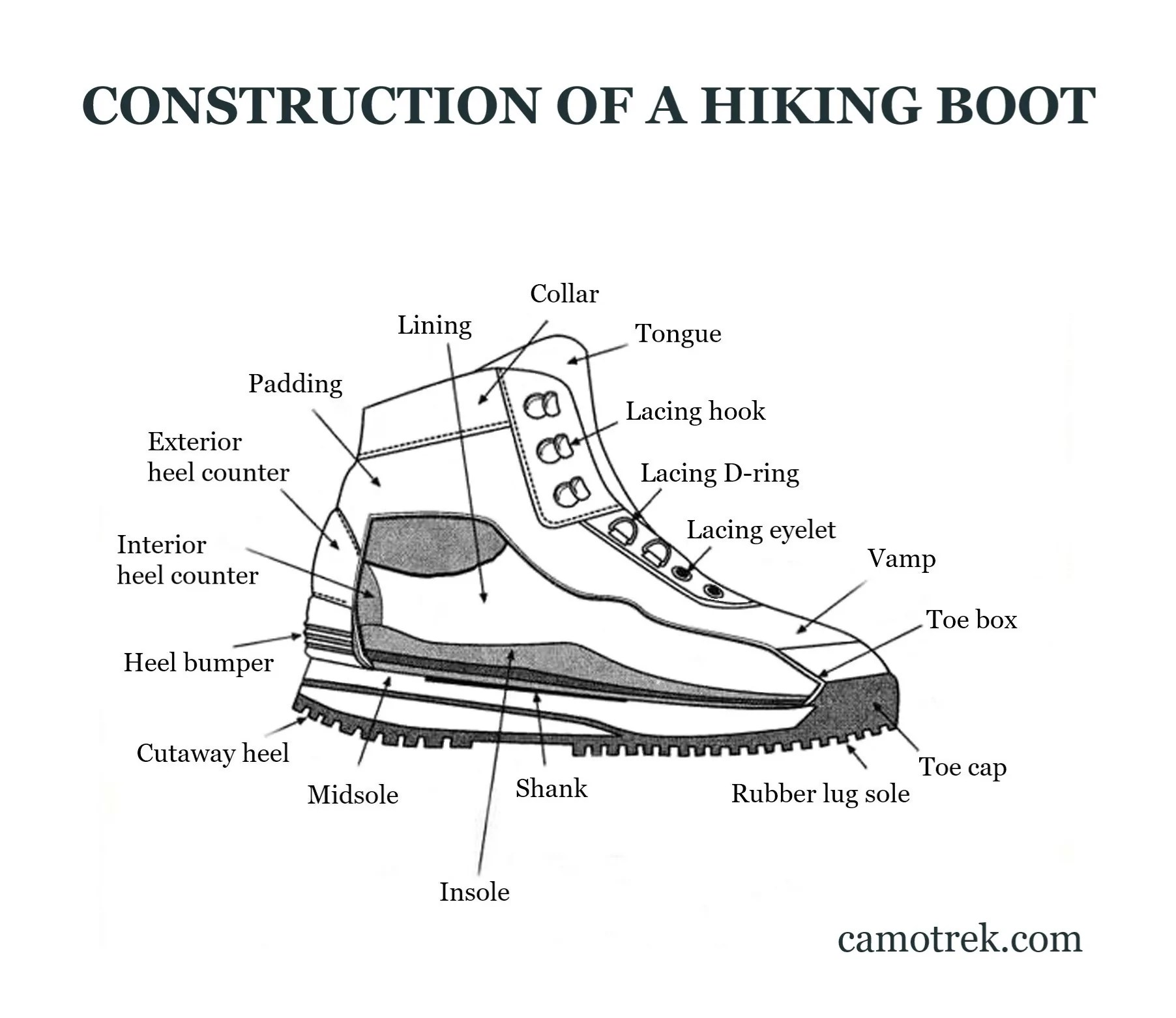 hight resolution of anatomy of a hiking shoe