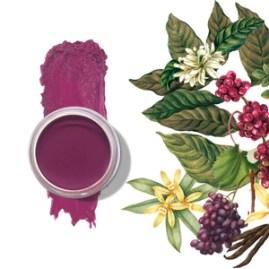 Pinot Noir Lip & Cheek Tint |100% Vegan | Clean Pigments