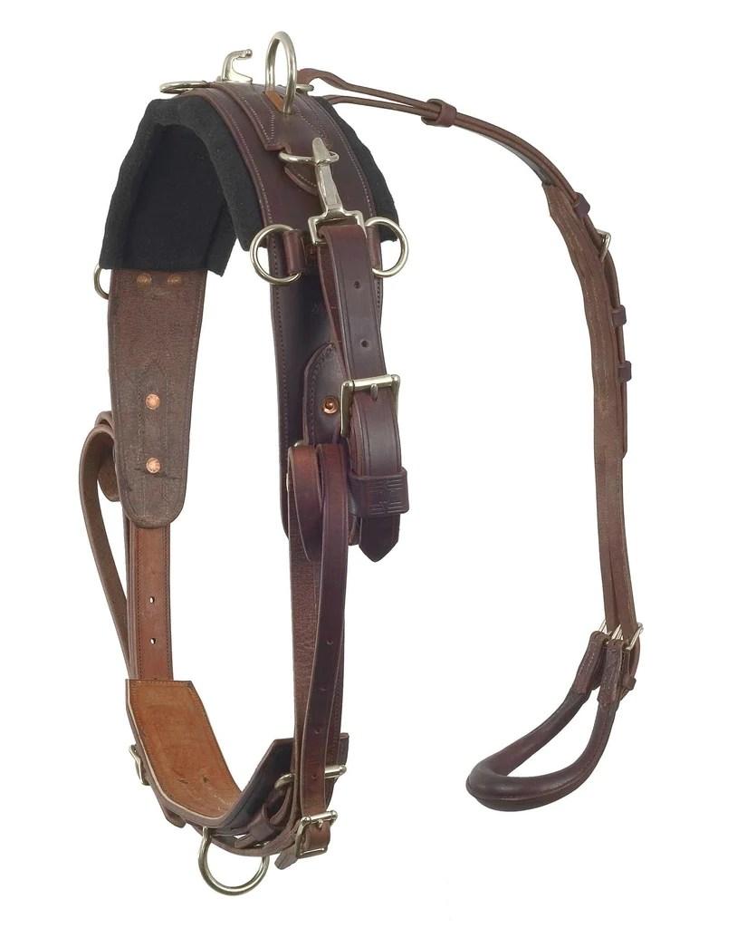 medium resolution of pony training harness 2500