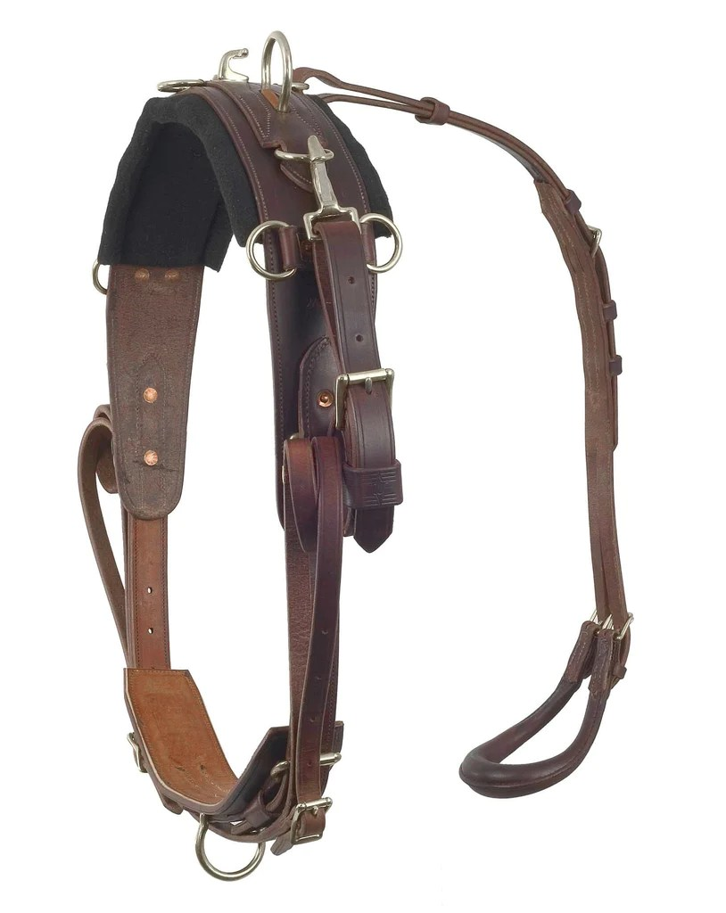 small resolution of pony training harness 2500
