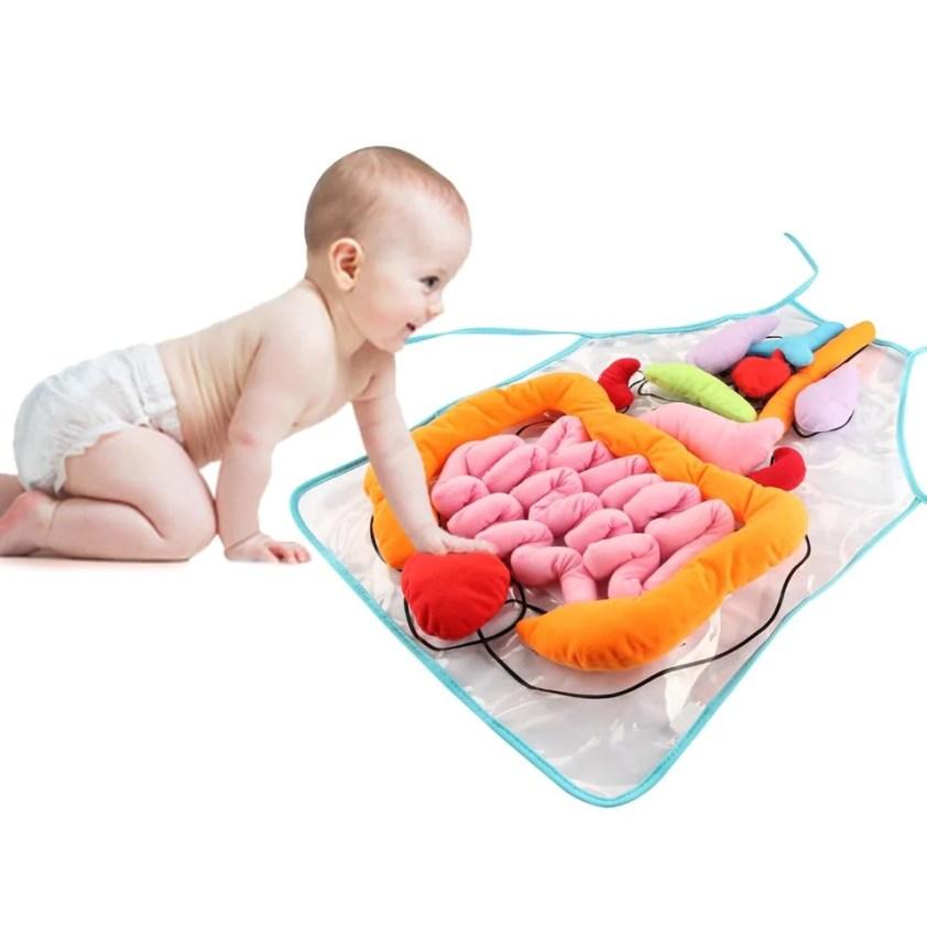 Human body Anatomy Apron educational Toy For kids - Trendy ...