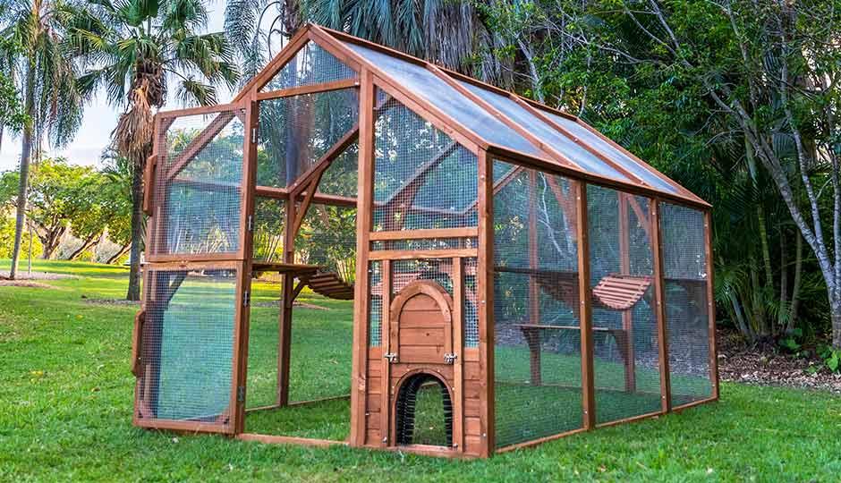 backyard cat enclosures keeping cats