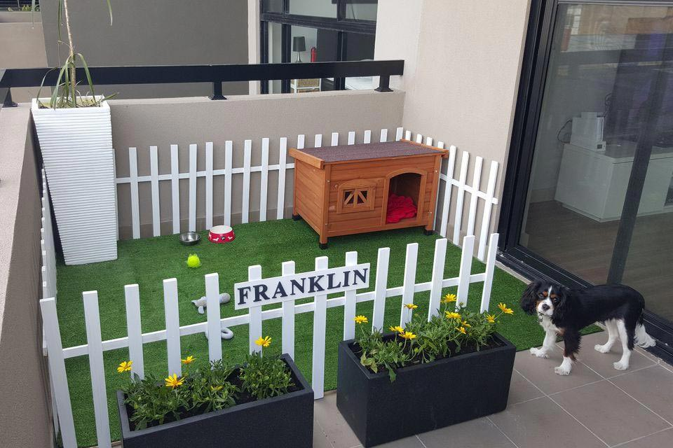 10 Cutest Backyard Dog Run Ideas Designs Megagrass